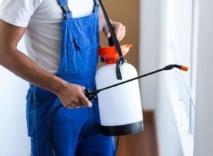 Call Us for the Best Bio hazard Cleaning Services Memphis Tennessee Can Offer