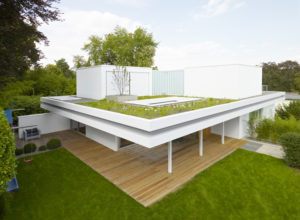 Green Roof Solutions